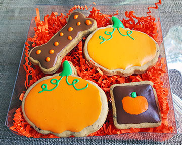 Pumpkin Theme Gift Box Set