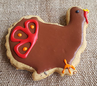 Turkey Shaped Dog Treat