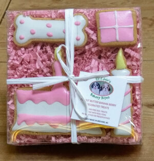 Birthday Treat Boxes