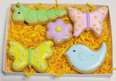 Spring-Gift-Box-Critters